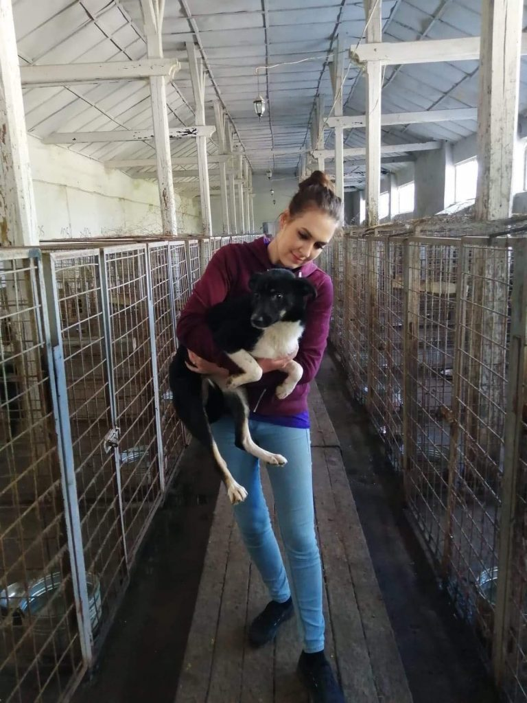 Rebecca Smyth, CEO, with a dog in Tecuci public shelter who later travelled to her home as a foster
